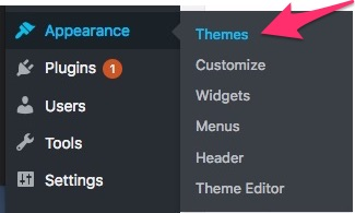 wordpress appearance themes